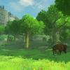 1466089303-wiiu-thelegendofzeldabreathofthewild-e32016-background-12